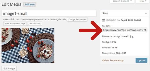 Edit dan copy image url