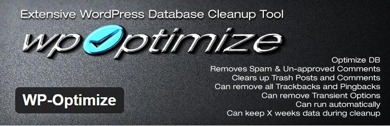 Plugin Optimasi database