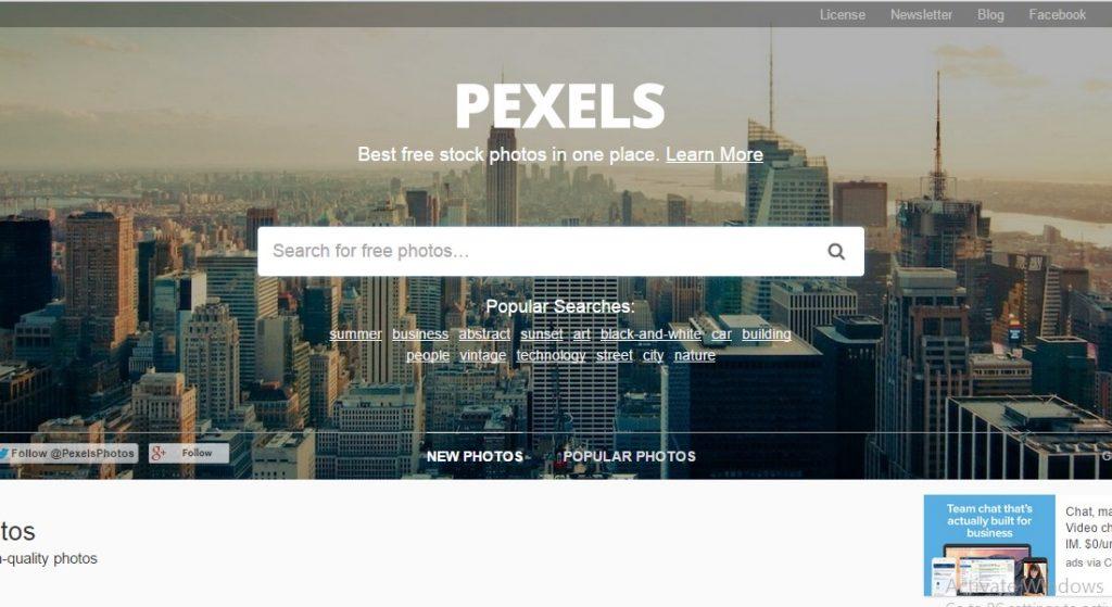 Pexel - free images