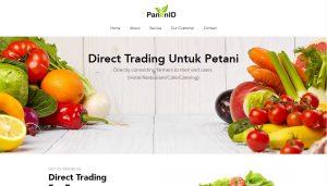 Panenid Website Landing Page